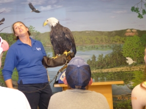Docent Showing Off One of the Eagles