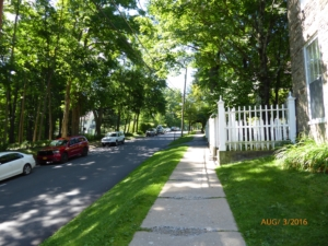 Lovely Street in Cooperstown