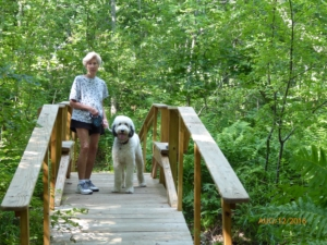Nature Trail in Searsport