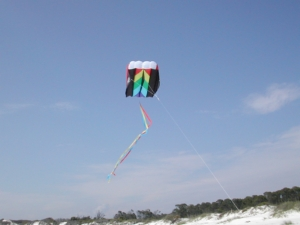 Kite Flying St. Joseph's Island