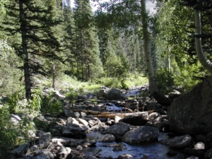 Another Beautiful Colorado Creek